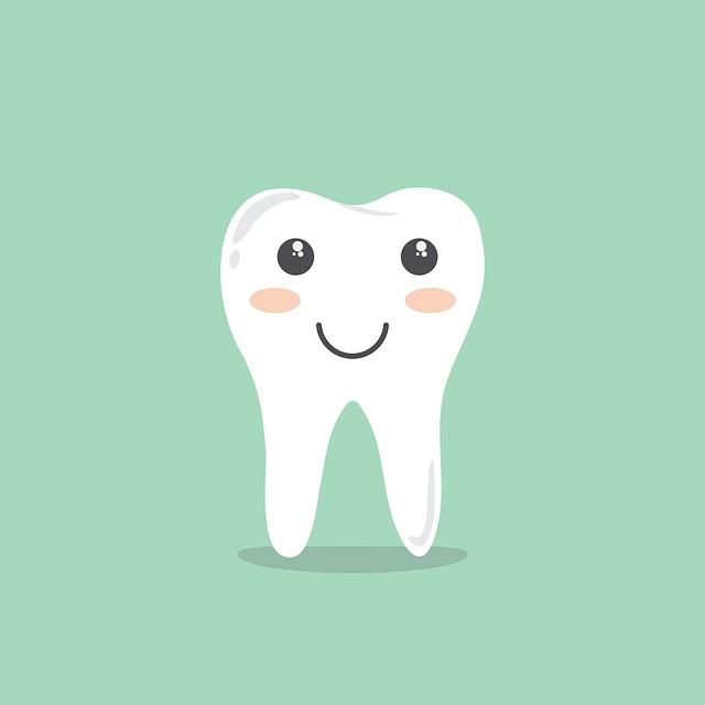 歯(PettyconによるPixabayからの画像 )